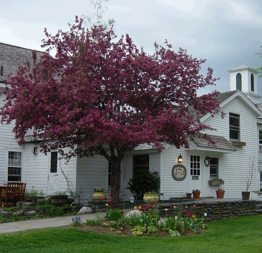 Vermont inn for sale